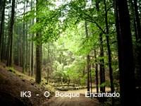 IK3 - O Bosque Encantado
