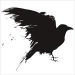 crow19