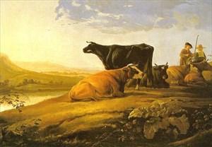 cuypherdsm