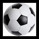 SoccerFanatics