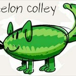 MelonColley