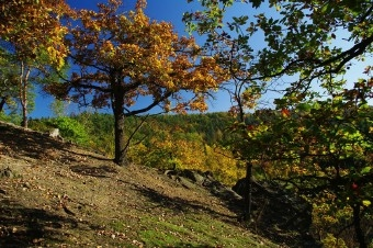 Vyhlidka Kozi bouda - jeden ze skalnich vychozu nad Berounkou