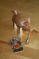 Crackling the Pig