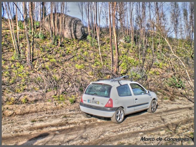 Clio TT