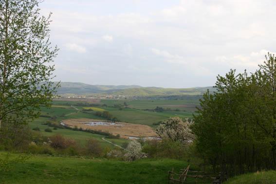 Teichwiesen