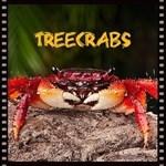 Treecrabs