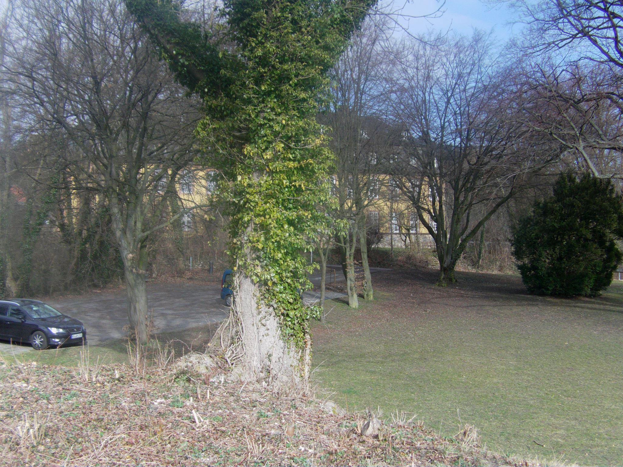 Blick vom aussichtspunkt zum Schloss