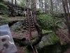 Schlossberg in Bavaria in a haunted forest