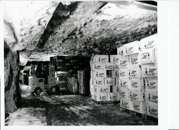Gc1c1am Grand Rapids Gypsum Mines Earthcache In Michigan