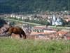 Transilvania GeoQuest 06 log image