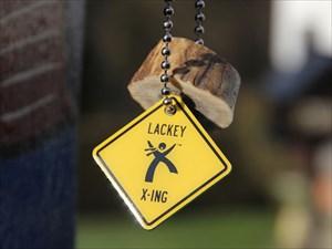 LACKEY X-ING