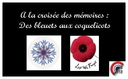 Gc7qhpq Coquelicots Bleuets Symboles De La Grande Guerre