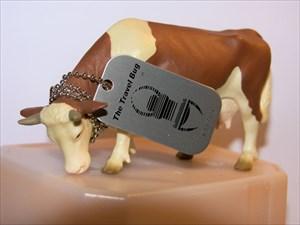 Frieda, the cow