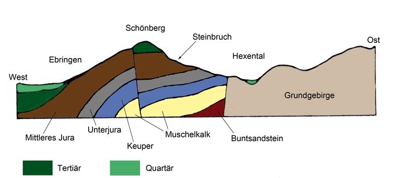 Geologischer Schnitt durch die Vorbergzone