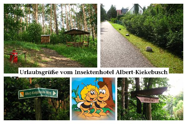 Kiekebusch