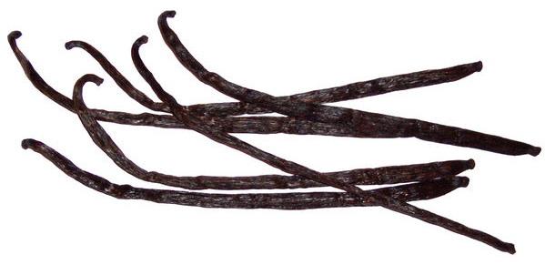 Vanilka lusk