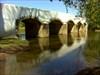 A ponte sobre o Cértima!