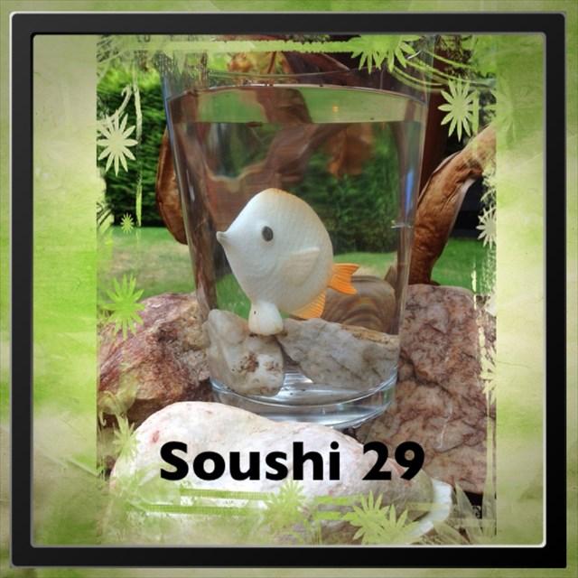 avatar de SOUSHI.29