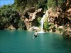 SAlto log image