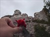 Fuzzy Squirt at Mt. Rushmore