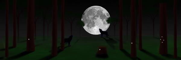 Nachtcache