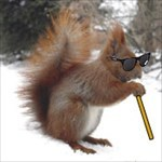 CrippledBlindSquirrel