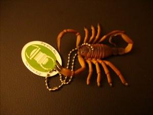 Scorpion88