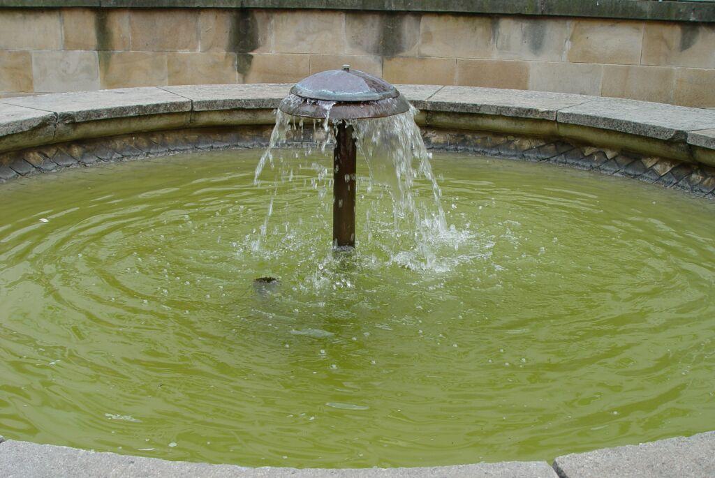 Fontana B
