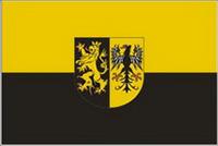 Bild Vogtlandflagge