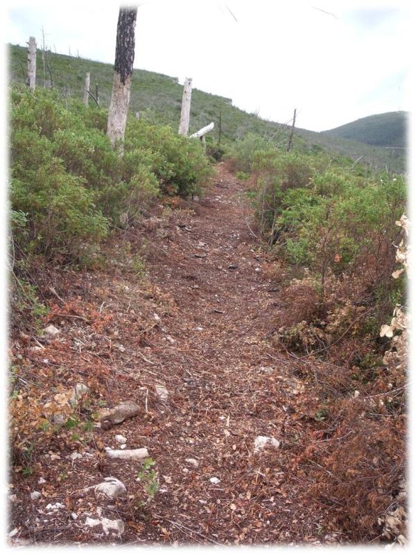 Trail, percurso aberto 2