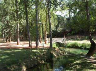 Bonito Park