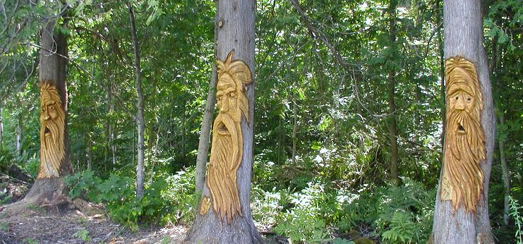 Quot cedar tree carvings ontario canada outside wooden