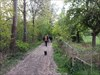 Rheinsteig 1_02