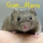 Team_Mausy