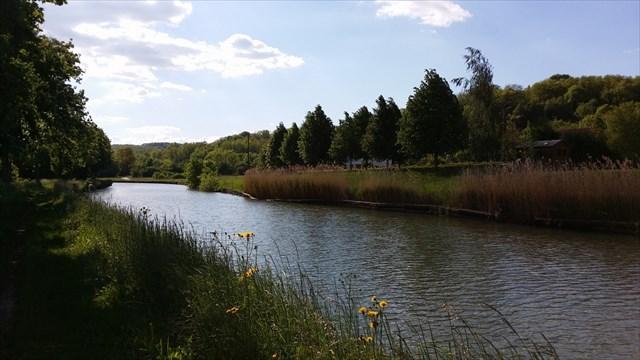 entre canal et Sânon