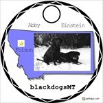 blackdogsMT