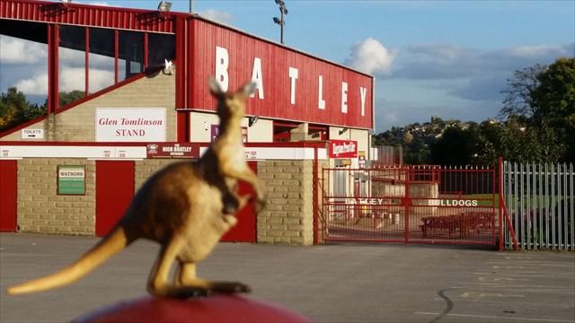 Dog Training Batley