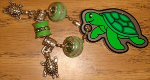 Travelin' Terrapin and his buddies are ready!