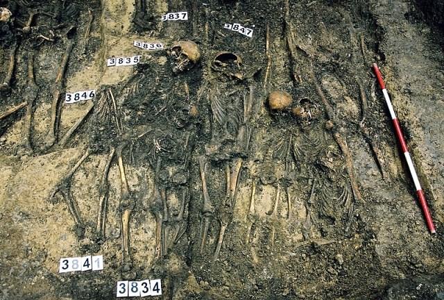 Odkryté hroby starého svatojakubského kostela - Archaia Brno o.p.s.