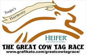 GCR_Toojin_02_Harmony_Heifer