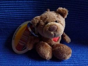 Renn-Bär