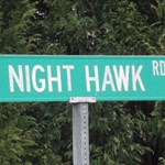 Night-Hawk