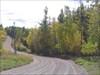 Winding fall road!