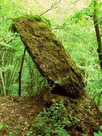 Zwölf-Uhr-Stein auf dem Hunsrück