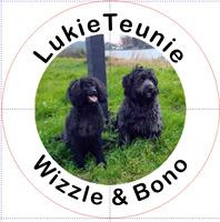 LukieTeunie Bono & Wizzle Suwâld Frl - NL 2021 GP1