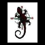 Swampgecko