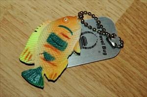 Ryba/Fish