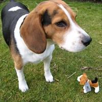Joep de Beagle