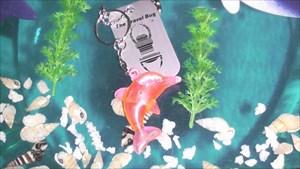 Tim's Pinker Delphin