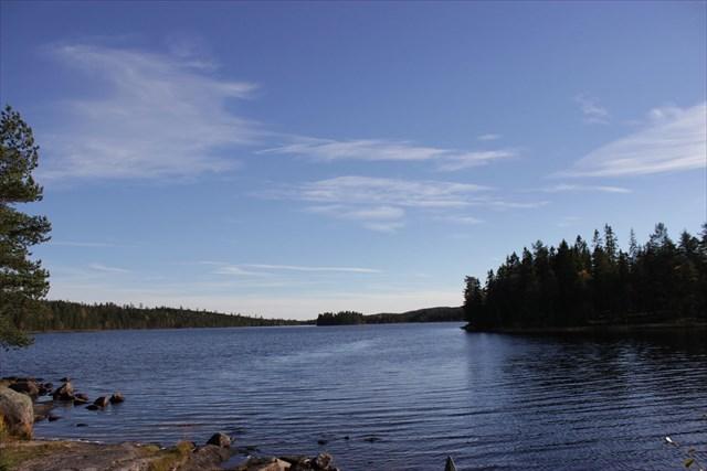 Utsikten mot dammen